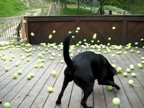 Bitte noch einen Ball…