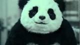 Sag nicht Nein zu Panda!